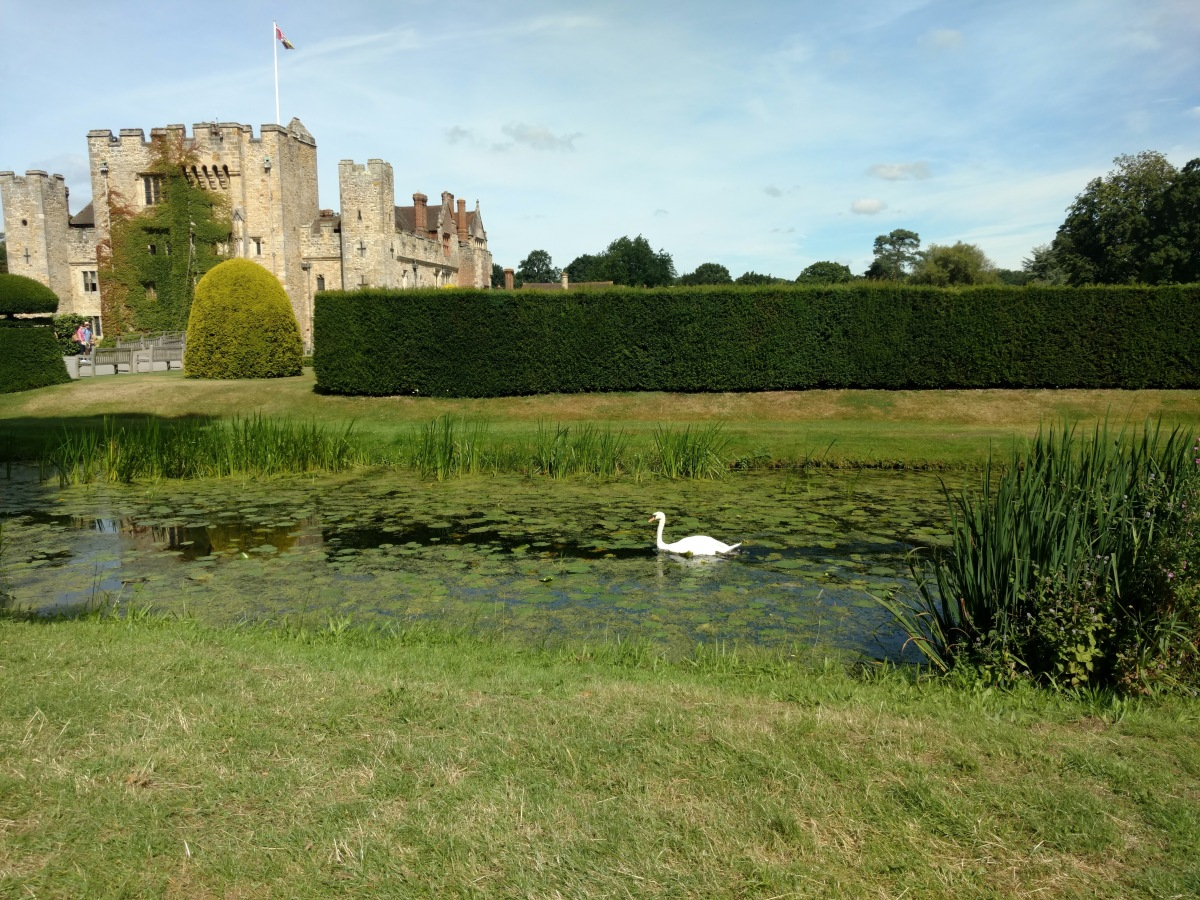 Don't pretend to be a duck: Lessons from a lovely day at Hever Castle