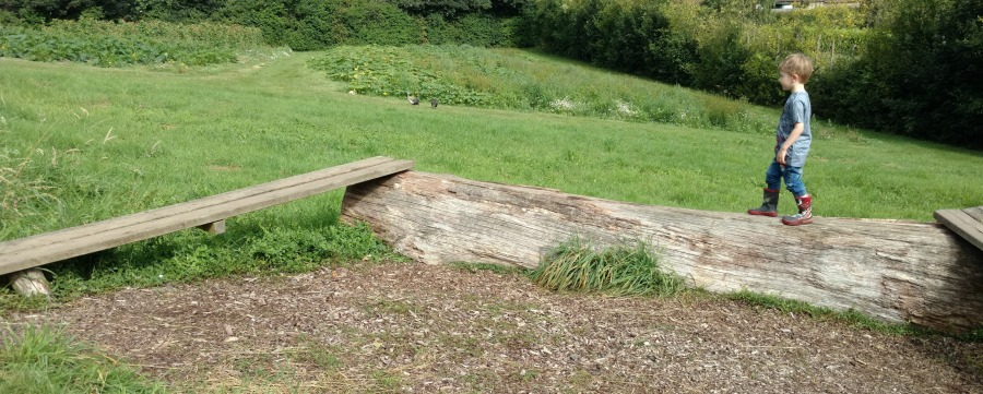 Balance beam at Priory Farm