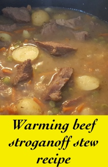 Warming beef stroganoff stew recipe