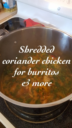 Shredded coriander chicken for burritos & more - great Mexican cuising