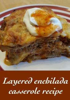 Plated enchilada vertical.jpg