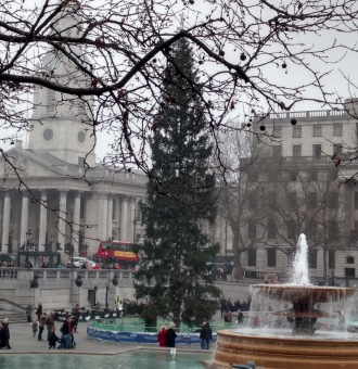 Christmas tree in Trafalgar Square