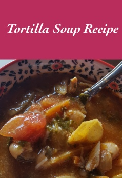 tortilla-soup-in-the-bowl